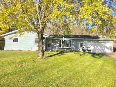 Single Family Home For Sale: 11074 Eagle Lake Road