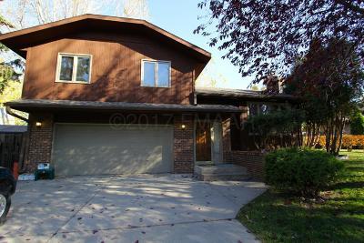Moorhead Single Family Home For Sale: 314 Dale Avenue S