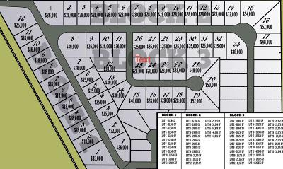Residential Lots & Land For Sale: 101 Neuman Boulevard N