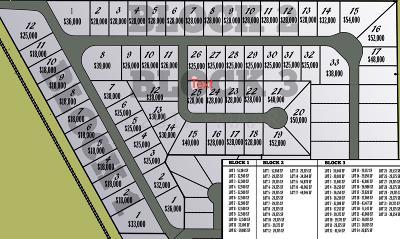 Residential Lots & Land For Sale: 200 Laverne Lane N