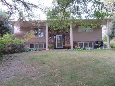 Pelican Rapids Single Family Home For Sale: 630 Mill Avenue E