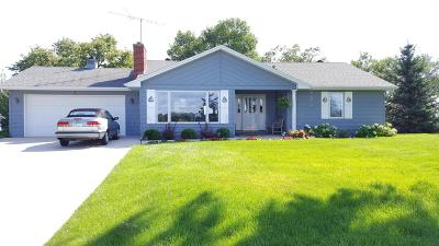 Single Family Home For Sale: 50574 County Hwy 9 --