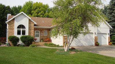 Moorhead Single Family Home For Sale: 4014 Rivershore Drive S