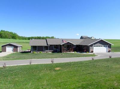 Detroit Lakes Single Family Home For Sale: 23670 W. Long Lake Road