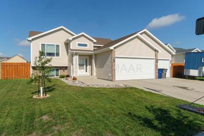 Moorhead Single Family Home For Sale: 4245 19th Street S