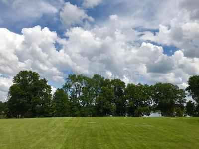 Vergas Residential Lots & Land For Sale: 92 Park View Drive