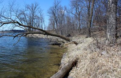 Audubon Residential Lots & Land For Sale: 16454 Bird Dog Road --
