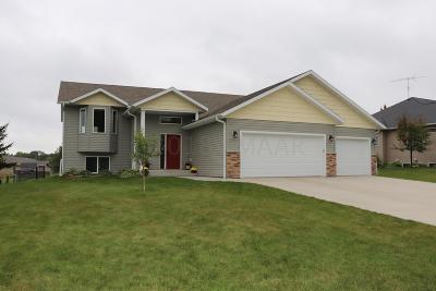 Detroit Lakes Single Family Home For Sale: 1817 Brainard Boulevard