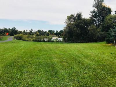 Residential Lots & Land For Sale: 88 Park View Drive