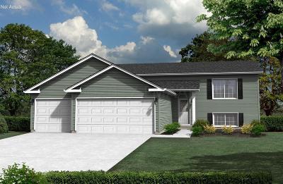 Gardner Single Family Home For Sale: 260 4 Street