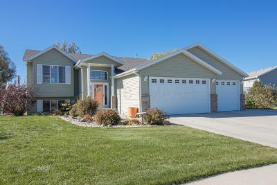 West Fargo Single Family Home For Sale: 585 S Sedona Drive