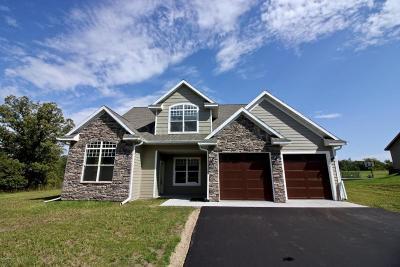 Detroit Lakes Single Family Home For Sale: 1845 Aspen Drive