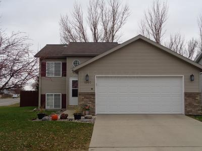 West Fargo Single Family Home For Sale: 1007 Sheyenne Park Place