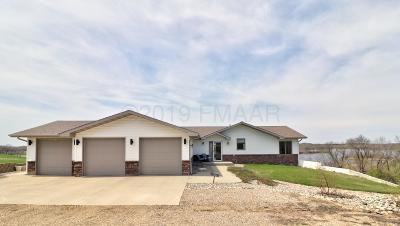 Audubon MN Single Family Home For Sale: $699,000