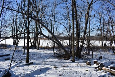 Ottertail Residential Lots & Land For Sale: Heartland Lake Road