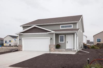 Moorhead Single Family Home For Sale: 4209 14 Avenue S