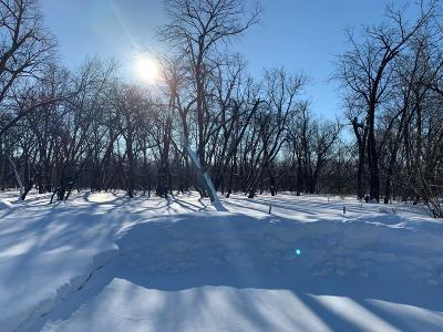 West Fargo Residential Lots & Land For Sale: 381 20th Avenue E
