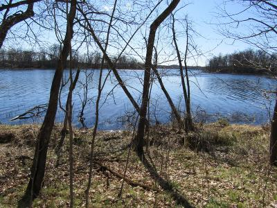 Residential Lots & Land For Sale: Tract C Leek Lake Drive