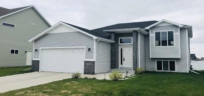 Moorhead Single Family Home For Sale: 3349 27th Street S