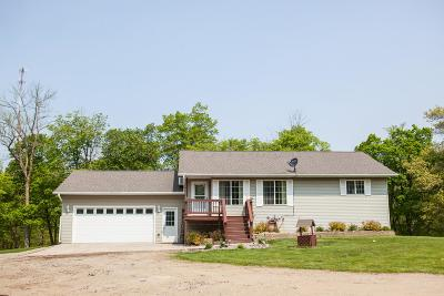 Detroit Lakes Single Family Home For Sale: 21878 Floyd Lake Drive