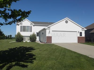 Moorhead Single Family Home For Sale: 3601 39th Street S