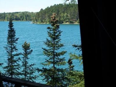 Single Family Home For Sale: Island Bad Medicine Lake --