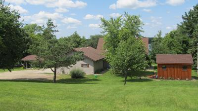 Detroit Lakes Single Family Home For Sale: 13532 Pearl Lake Drive
