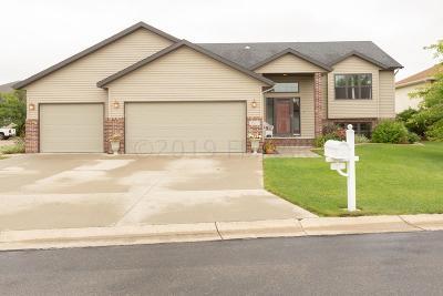 Fargo, Moorhead Single Family Home For Sale: 3527 Park Avenue S