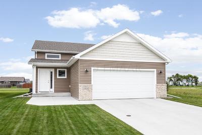 Moorhead Single Family Home For Sale: 4558 13th Street S
