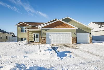 Moorhead Single Family Home For Sale: 3533 17th Street S