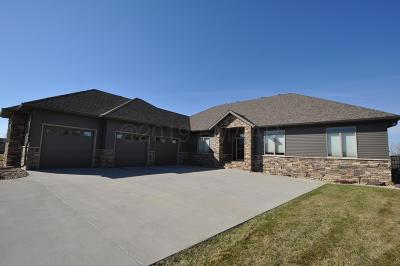 Clay County Single Family Home For Sale: 4517 Allyson Court