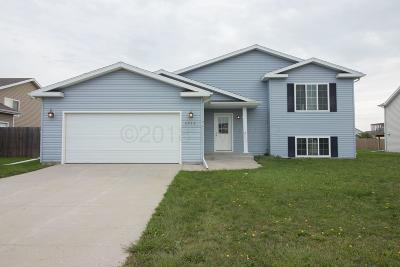 Clay County Single Family Home For Sale: 4244 17th Street S