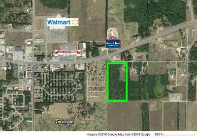 Park Rapids MN Commercial For Sale: $489,000