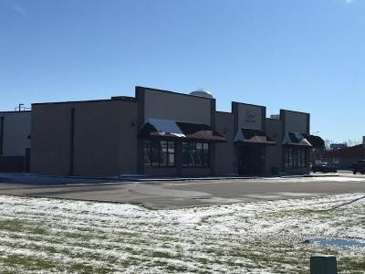Commercial For Sale: 2015 Sahlstrom Drive