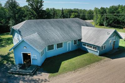 Mentor Single Family Home For Sale: 15545 Sandy Beach Road SE