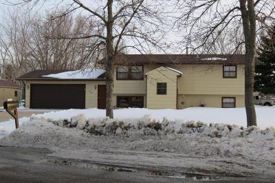 Single Family Home For Sale: 1906 4th St NE