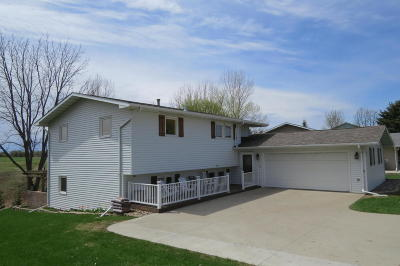 Single Family Home For Sale: 1203 9th Street SW