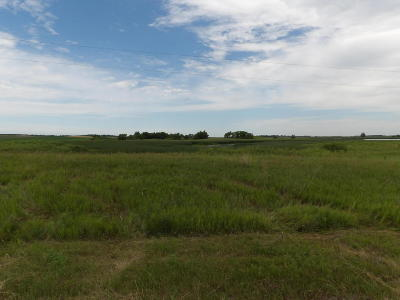 Nome ND Residential Lots & Land For Sale: $128,000