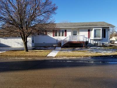 Ellendale Single Family Home For Sale: 75 3rd Avenue N