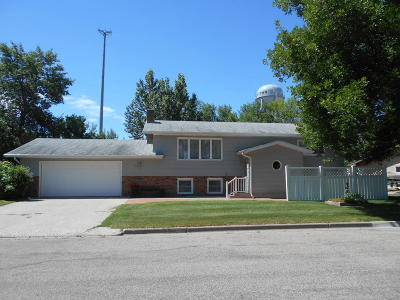 Jamestown Single Family Home For Sale: 307 16th Street SW