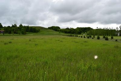 Barnes County Residential Lots & Land For Sale: Lot 33 Sheyenne Valley Estates