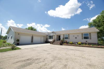 Ellendale Single Family Home For Sale: 115 2nd Street SW