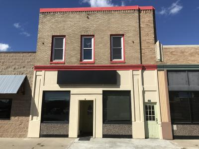 Jamestown Commercial For Sale: 110 2nd Street NW
