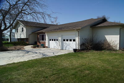 Ellendale Single Family Home For Sale: 321 5th Street S