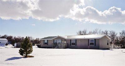 Velva Single Family Home For Sale: 4685 Hwy 41 N