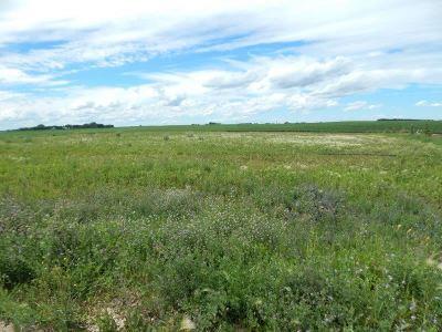 Minot Residential Lots & Land For Sale: Lot 6 Beaver Creek Estates