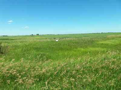 Bottineau County, Burke County, Divide County, McHenry County, McLean County, Mountrail County, Pierce County, Ramsey County, Renville County, Rolette County, Ward County, Wells County, Williams County Residential Lots & Land Back On Market: 160 Acres