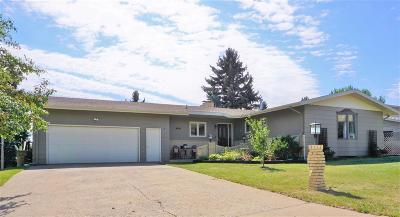 minot Single Family Home For Sale: 1203 Valley View Drive
