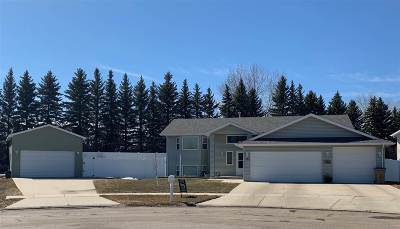 minot Single Family Home For Sale: 1705 SW Evergreen Ave