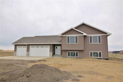 Burlington Single Family Home For Sale: 3909 Grayson Drive